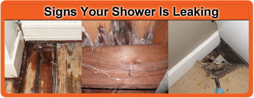 Signs Your Shower is Leaking